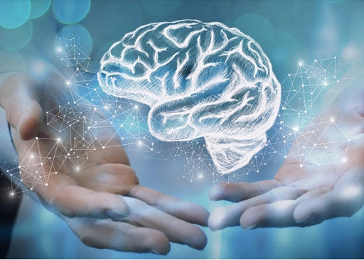 Very Important! What Are The Habits That Damage Your Brain?